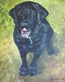 "Commission Acrylic portrait of ""Jake"" A Black Labrador by Lisabelle"